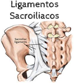 ligamentos-sacroiliacos